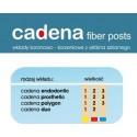 Włókno szklane Cadena Fiber Posts
