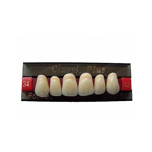 Zęby Classic Plus fason 32