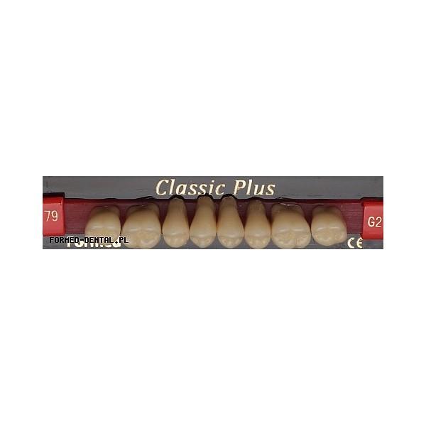 Zęby Classic Plus boki GÓRA fason 76