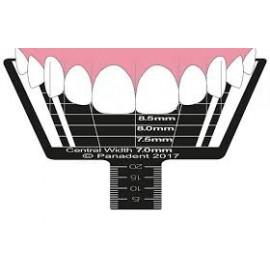 Linijka do wyznaczania proporcji zębów ESTHETIC TOOTH PROPORTION GAUGE